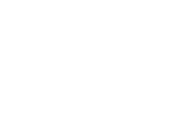 BEE Contribution - Our ability to maximise your BBBEE procurement contribution